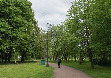Ein Mann geht den Weg des Parks mit Kastanienbäumen entlang. Horizontale Ausrichtung