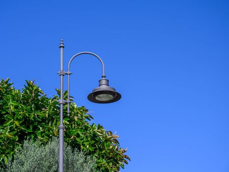 Street lamp on a background of blue sky and ficus leaves