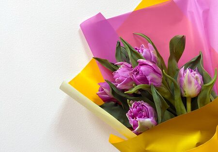 Bouquet of purple tulips in multi-colored paper on a light background Foto de archivo - 134821936