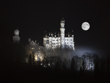 moonlit: Neuschwanstein Castle in the Bavarian Alps at moonlit night, Germany