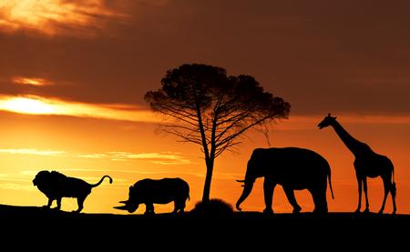 Siluetas de animales africanos al atardecer en la sabana, collage