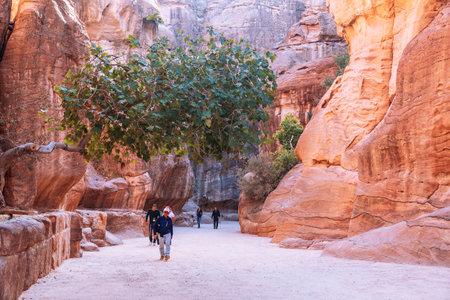 slot canyon: PETRA, JORDAN - NOVEMBER 04, 2016: Tourists in narrow passage of rocks of Petra canyon in Jordan. Petra has been a UNESCO World Heritage Site since 1985. Way through Siq gorge to stone city Petra Editorial