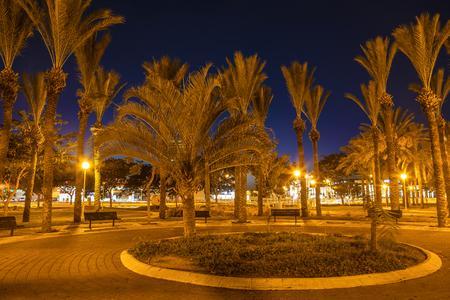 ashdod: City park at night in Ashdod, Israel