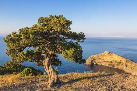Top view of Cape Kapchik (Lizard), Crimea, Russia