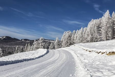 Road in the Altai mountains on a sunny frosty winter day. Altai Republic, Siberia, Russia