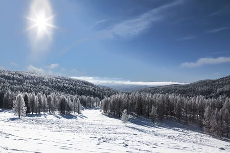 Top view of the valley and taiga on a bright Sunny winter day. Altai Republic, Russia