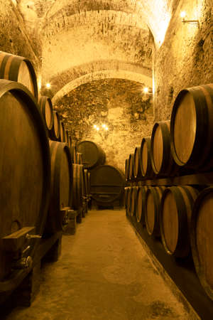 Ancient wine cellar with rows of wooden wine barrels