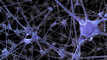 3D rendering of a network of neuron cells and synapses through which electrical impulses and discharges pass during the transmission of information inside the human brain Banco de Imagens