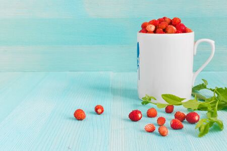 Ripe strawberries with plant leaves on blue wooden background, strawberries in white old mug, healthy food concept. close up. copy space