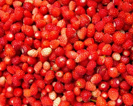 Ripe strawberry fruit berry closeup background. Garden and vegetable garden