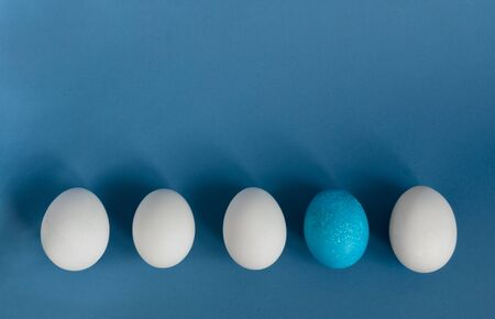 White eggs and blue egg in a row on blue background.Concept. 写真素材