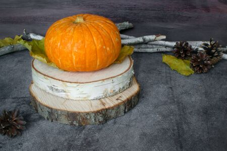 Fall Thanksgiving and Halloween. Oktoberfest. Autumn harvest. Ripe pumpkins, yellow leaves, birch branches, cones on the background of a dark table. Useful seasonal vegetables. Ingredients. copy space