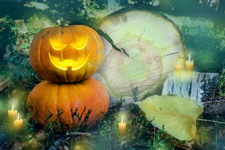 Halloween pumpkin on the ground at night in a mystical forest. Halloween background. Sinister eyes of pumpkins. Halloween party.Autumn festival. Magic. postcard. copy space