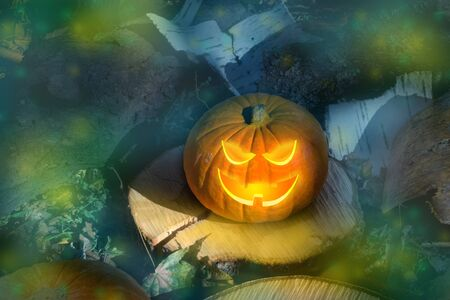Halloween pumpkin on the ground at night in a mystical forest. Halloween background. Sinister eyes of pumpkins. Halloween party.Autumn festival. Magic. banner. postcard. copy space