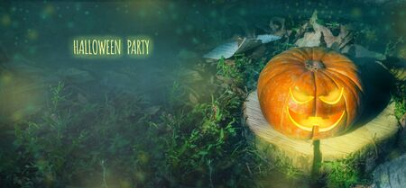 Halloween pumpkin on the ground at night in a mystical forest. Halloween background. Sinister eyes of pumpkins. Halloween party.Autumn festival. Magic.place for text flyer banner. postcard.