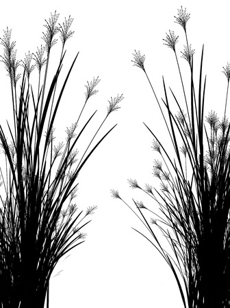 Field grass on a white background isolated 3d illustration Banco de Imagens