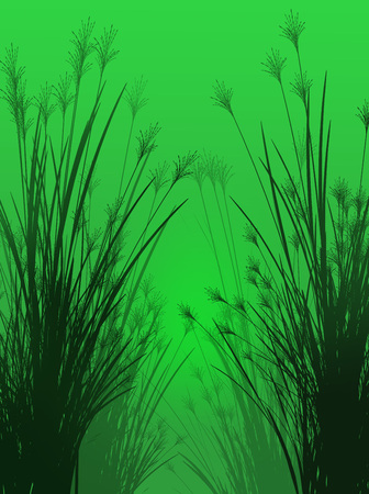 Field grass on a green background isolated 3d illustration