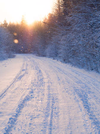 snow falls: beautiful winter road through the forest, snow falls