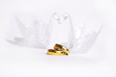 girl with rings: Two swans love, Extreme closeup of Wedding rings