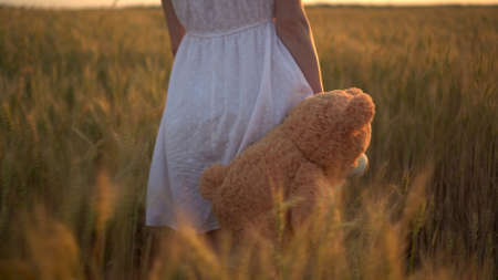 A young woman walks through a wheat field with a teddy bear at sunset. Close-up of a girl holding a teddy bear in her hand. Archivio Fotografico