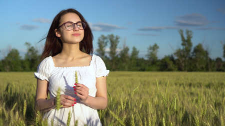 A young woman in a white dress stands in a green wheat field and holds a spikelet in her hands. The girl touches the spikelet.