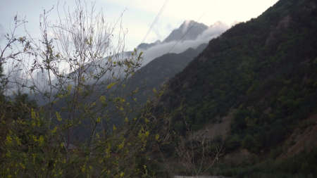 Against the background of a green bush, a view of the mountain in the clouds. Caucasus mountains.