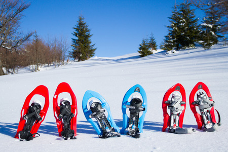 snowshoes: Snowshoes standing in the snow. Stock Photo