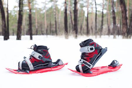 snowshoeing: Snowshoeing.