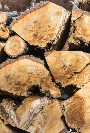 chock: Natural wooden background ,firewood, Firewood stacked and prepared for use pile of wood logs.