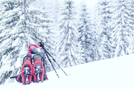 Winter hike in the mountains. Snowshoes stand in the snow against the backdrop of the forest.