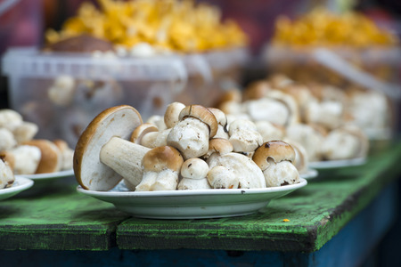 selling mushrooms at the village market in the fall