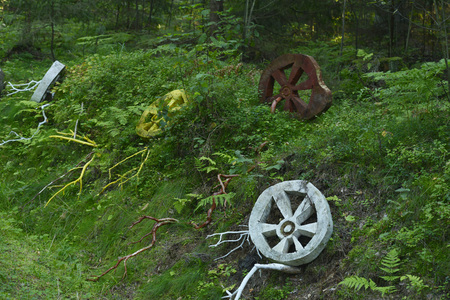 the decoration of the Royal forest of coniferous old-style wheels