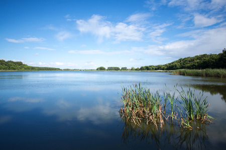 the lake on the Curonian spit in the Kaliningrad region Russia