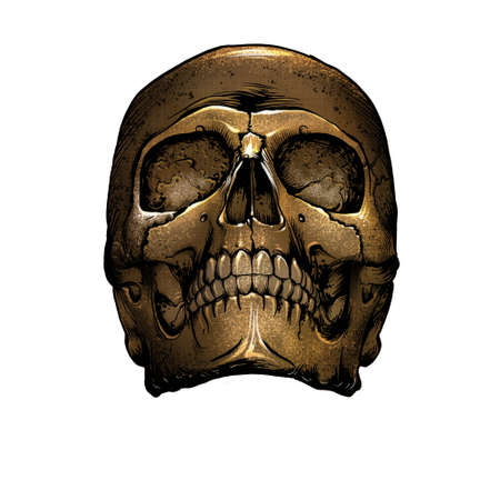 vintage skull front view yellow black scratched