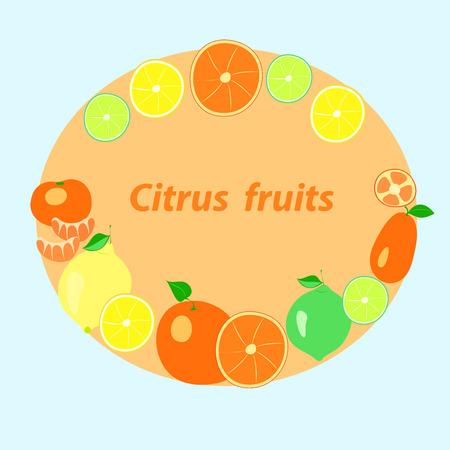 citrus fruits on an orange background, vector illustration, Illustration