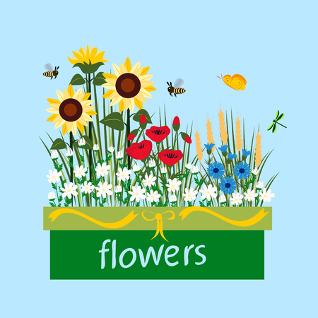 Wildflowers on a blue background, vector illustration
