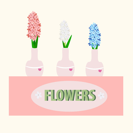 hyacinths in a vase  on light background, vector illustration