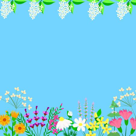herbal plants on a blue background, vector illustration Illustration