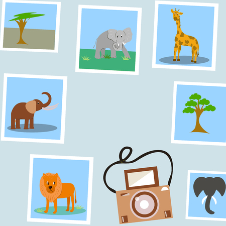photos of tropical animals. camera on a gray background