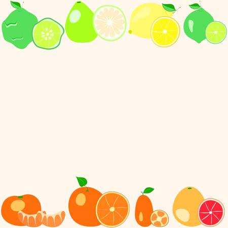 citrus fruits on a light background Illustration