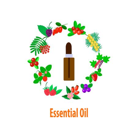 fruit vitamin essential oil, vector set of fruits and berries in the shape of a circle, brown bottle with a dropper on a white background Ilustração