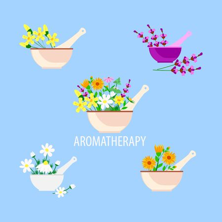 aromatherapy and alternative natural medicine, lavender herbs and chamomile and calendula in a mortar with pestle, vector illustration in a flat style Иллюстрация