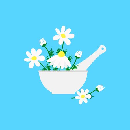 aromatherapy, pharmacy chamomile in a mortar with pestle, vector illustration isolated on white background
