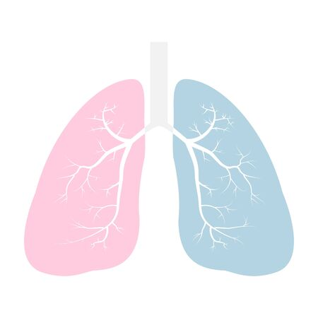 Lungs icon vector illustration, pink and blue flat style. Internal organs of the human design element. Anatomy, medicine concept. Healthcare Isolated on white background. Vector Illustration