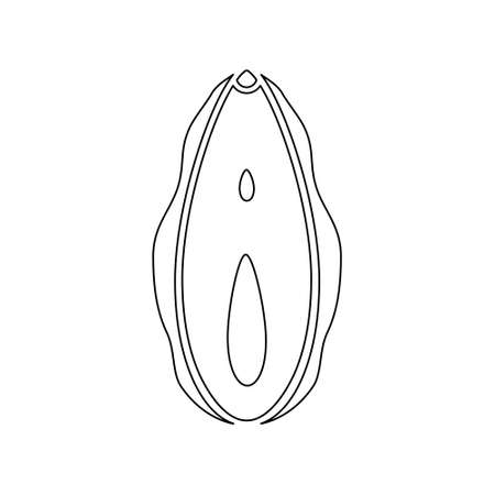 Human vagina line icon. Female opening reproductive sex organ vector illustration isolated on white Иллюстрация
