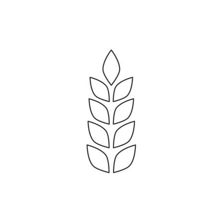 Grain line icon. Ears of wheat linear illustration isolated on white.