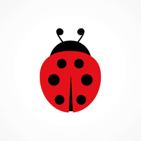 Ladybug cute character. Ladybird insect. Vector isolated on white Иллюстрация