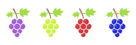 Different grape set. Cute sweet violet, green, red and blue grape branches. Healthy food concept. Vector illustration isolated on white. Иллюстрация