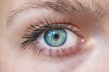 Picture of a blue human eye. Close-up of the eye Stock Photo