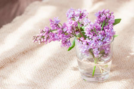 Purple and pink lilac flowers in a glass vase. Bouquet of lilac for mother or wife concept. Copy space. Standard-Bild